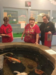 Three people standing in front of an indoor pond with large fish